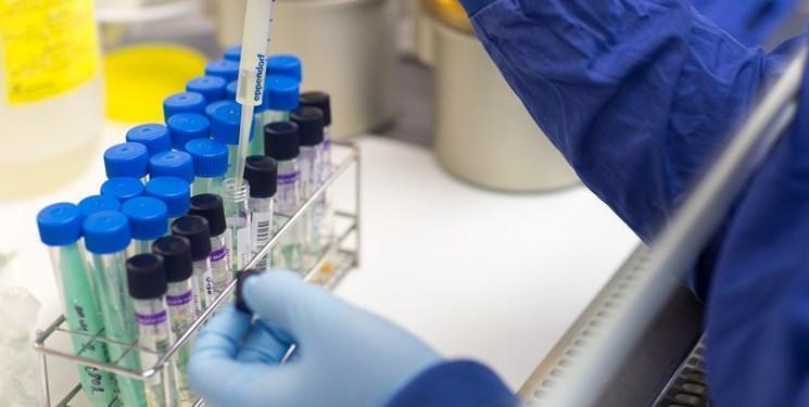 افزایش تعداد مبتلایان به ویروس کرونا در قزاقستان به 68 نفر